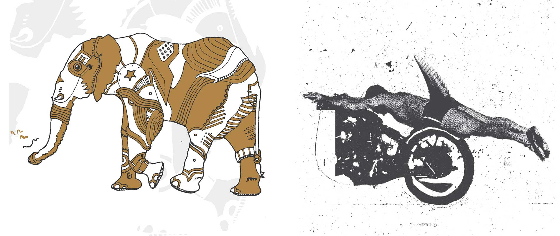 Animal Collective Fupete Jack la Motta 36 Chambers Drago